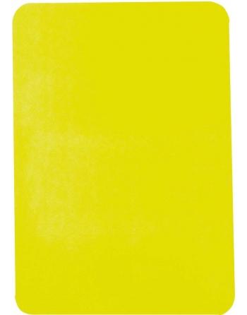 Carte disciplinaire jaune...