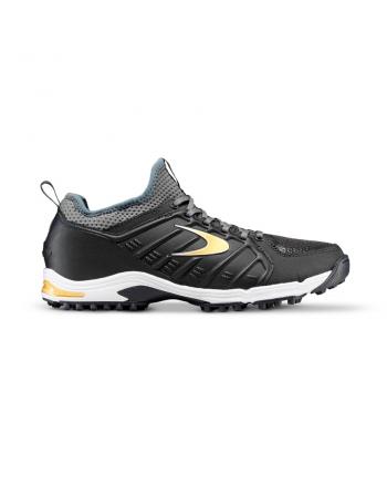 Chaussures noires et dorées...